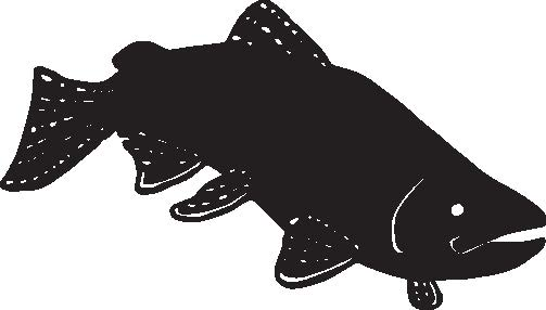 black drawing of fish