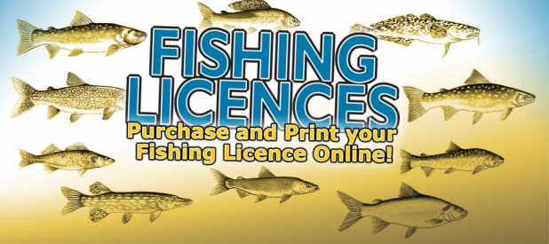 fishing licence