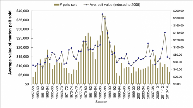 Average value of marten pelts sold 1957-2014 NWT