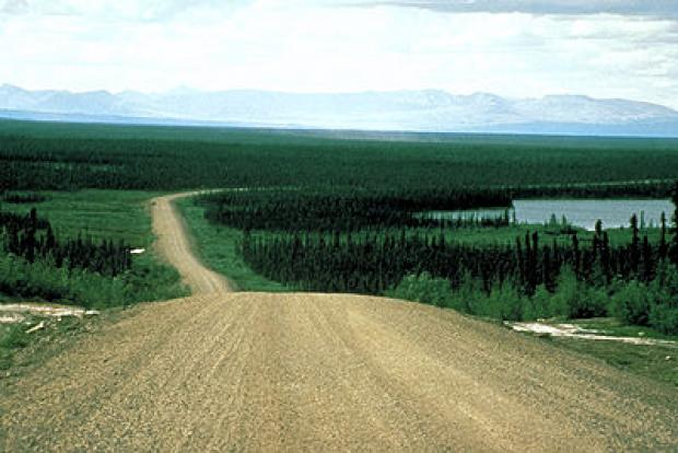 A linear feature in the southern Taiga Plains - road along the Mackenzie River, near Wrigley