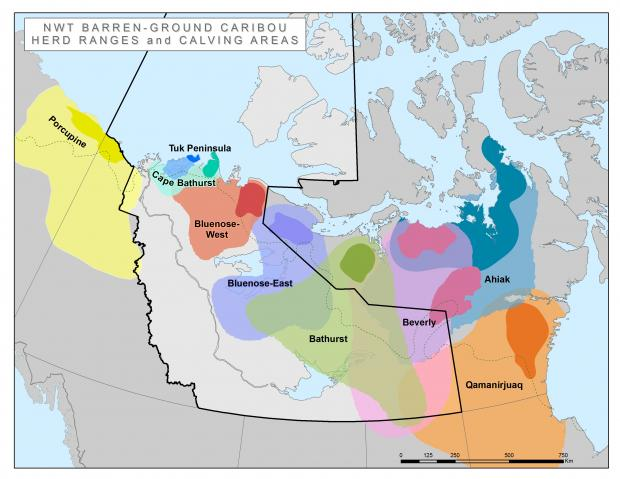NWT Barren-ground caribou herd ranges and calving areas