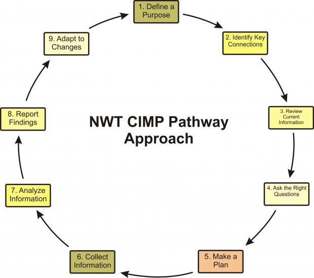 NWT CIMP Pathway Approach