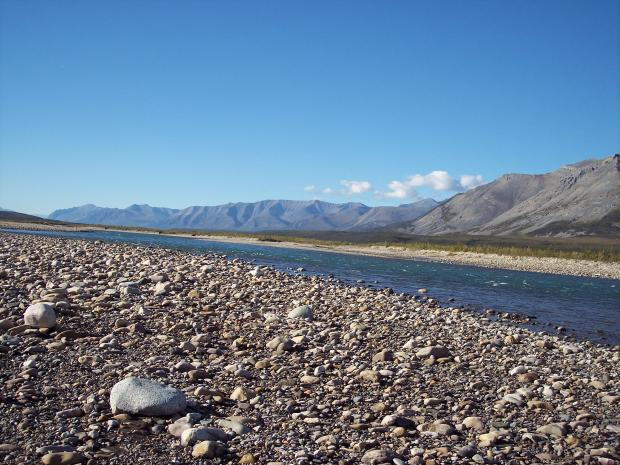 View up Tsiigehnjik (Arctic Red River) from east shore near Arctic Red River Outfitters