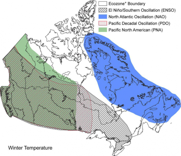 Large-scale climate oscillations influencing Canada 1900-2008